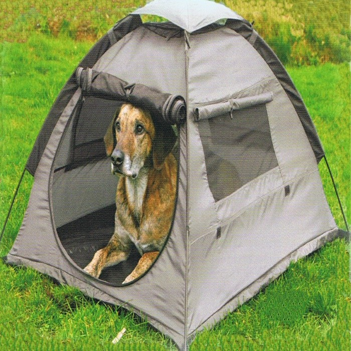 tent camping with pets